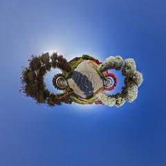Dubai Miracle Garden @ 360 (jeglikerikkefisk) Tags: panorama sun dubai pano uae sonne garten sphericalpanorama vae miraclegarden kugelpanorama littleplanet sphrischespanorama dubaimiraclegarden pflanzenanlage pflanzeninderwste