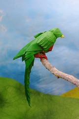 Quetzal - Winston Lee (P. Colman) Tags: bird paper origami quetzal sd1merrill