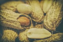 P is for peanuts.... (Joe Hengel) Tags: peanuts macromondays