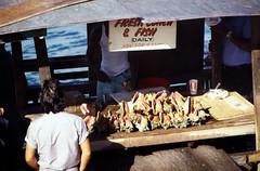 Bahamas 1988 (233) New Providence: Potter's Cay, Nassau (Rüdiger Stehn) Tags: hafen dia analogfilm scan 1980s slide 1980er diapositivfilm kleinbild kbfilm analog 35mm canoscan8800f 1988 contax137md bahamas nassau newprovidence amerika westindischeinseln karibik mittelamerika markt menschen leute grosefechterschnecke riesenflügelschnecke lobatusgigas eustrombusgigas strombusgigas meeresschnecken fechterschnecke flügelschnecke queenconch conch hypsogastropoda littorinimorpha stromboidea strombidae lobatus weichtier mollusca molluske schnecke gastropoda orthogastropoda caenogastropoda sorbeoconcha fischmarkt potterscay thebahamas nordamerika arbeit rüdigerstehn