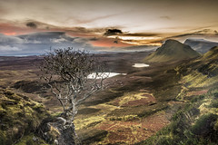 That Tree (bradders29) Tags: tree skye clouds sunrise scotland december highland d750 trotternish quiraing biodabuidhe