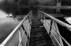 Viejo pantalan (Perurena) Tags: blackandwhite bw blancoynegro rio river madera agua galicia pontevedra abandono amarre pantalan atraque riolerez