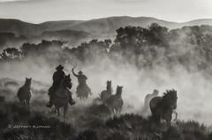 cowboys and indians... (J. Kaphan Studios) Tags: horses silhouette cowboys blackwhite cowboyhats blackwhitephotography ranchlife horsephotography