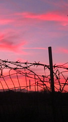 I can't resist (Consuelo Busin) Tags: sunset sky cloud wire barbed