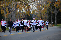 Run For the Cure 2015 Runners (pokoroto) Tags: autumn people canada calgary for october run alberta runners cure 10 2015     kannazuki   themonthwhentherearenogods 27