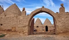 welcome to Harran (vitamink8) Tags: turkey ancient asia sanliurfa anatolia assyria harran
