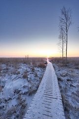 Walkway to light (Jon Norppa) Tags: winter sunset finland landscape easternfinland nikond750