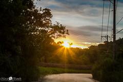 Ultima foto de 2015 (Marciobien) Tags: sunset pordosol sun sol sunshine sopaulo natureza estrada 7d mato 24105mm canon24105f4 24105mmf4 taiaupeba canoneos7d canon7d marciobianchi marciobien