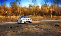 BMW M3 (speng1985) Tags: bmw m3 dealer 118 kyosho e92