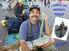 P1010075B (MFTMON) Tags: africa travel vacation dale snake morocco marrakech djemaaelfna dalemorton mftmon