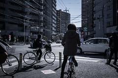 grafica_jp_flickr-1378 (grafica.tokyo) Tags: leica japan panasonic saitama summilux tokorozawa 15mm f17 gm5