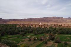 imgp4930 (Mr. Pi) Tags: city trees houses mountains village hills oasis morocco agriculture kasbah tinghir highatlas
