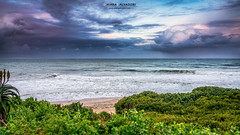 Jeffreys Bay (Chiara Salvadori) Tags: ocean africa travel winter sunset sea wild sun storm green beach nature water colors landscape southafrica spring scenery surf sundown outdoor indianocean wave cape traveling eastern easterncape jeffreysbay sudafrica