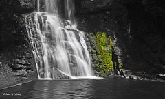 Waterfalls in BW and Green Moss   (Thank you, my friends, Adam!) Tags: art lens photography nikon gallery photographer fine excellent dslr