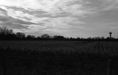 Sometimes, somewhere (tonic_witch) Tags: blackandwhite film noiretblanc ilfordhp5plus contaxrx planart1450