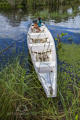 Transporte na Amaznia (Rita Barreto) Tags: brasil barco canoa amazonas transporte amaznia riosolimes hidrovia iranduba nortedobrasil