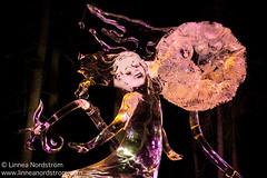 Ice Art - Dandelion
