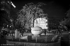 HAMANI 2016 IN TOKYO ON MARCH 2016  Elena Di Vincenzo ((Miss) *Elena Di Vincenzo*) Tags: japan sensoji tokyo shinjuku shibuya harajuku cherryblossom sakura asakusa sumida giappone hanami uenopark reportage tokyojapan hachiko tempio templi chiyoda hachi shibuyastation asakasa ciliegi hanamitokyo livereport japanexpo sakurahanami shintoista sakuracherryblossom elenadivincenzo chiyodapark japan2016 hanamisumidapark hanamishinuku hanamishibuya hanamielenadivincenzo hanamijapan2016 hanami2016 sendogi hanamiuenopark imperorpalace