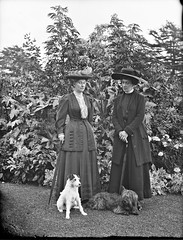 Two ladies with elegant hats and two dog - Yeehaw! (National Library of Ireland on The Commons) Tags: dog hats terrier bessborough umbrellas glassnegative countess hattage nationallibraryofireland ahpoole princessmarielouiseofschleswigholstein poolecollection limerickbybeachcomber arthurhenripoole hatoriffic countessofbessborough blanchevereponsonby blancheguest