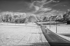 _DSC1566_k (de98lip) Tags: bw ir none infrared tby sonya700