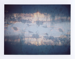 Demarcate (benjaflynn) Tags: light sunset sky sun film nature clouds analog rural vintage polaroid iso100 evening countryside sticks fuji antique doubleexposure horizon dirty retro multipleexposure flip goopy fujifilm mistake filmcamera prairie trippy setting bellows manualfocus instantcamera pola cloudporn rotated landcamera packfilm prairiegrass opensky foldingcamera instantfilm loaming instantprint thecountry scannedfilm primelens sunsetporn fp100c skyporn automatic230 polalove doubleexpo rurality fixedfocallength peelapartfilm theprairie epsonperfectionv500 benseidelman sauerfamilyprairiekame landcameraauto230 polaroid114mmf88lens