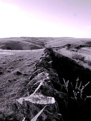 Enfolding Gently (Light's_[di]vision) Tags: stone mt historic ranges adelaide walls grassland eastern lofty slopes