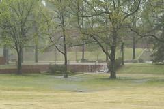 DAVE8496 (David J. Thomas) Tags: storm water rain lab arkansas biology microbiology thunder precipitation batesville lyoncollege