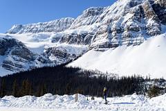 (brookpeterson) Tags: banff icefieldsparkway crowfootglacier