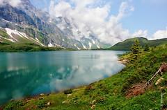 Trbsee (welenna) Tags: blue schnee summer sky mist mountain lake snow mountains alps water landscape switzerland see wasser view swiss wolken berge alpen blume berneroberland wasserspiegel trbsee schwitzerland