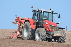 Massey Ferguson 6616 Tractor with a Kuhn Combiliner Venta LC302 Seed Drill & HR3004 Power Harrow (Shane Casey CK25) Tags: county ireland red horse irish plant tractor field set work pull one spring beans hp nikon power earth farm cork farming working cereal pass machine seed ground machinery soil dirt till crop crops farmer agriculture dust setting soya cereals pulling contractor ferguson planting sow drill kuhn venta horsepower harrow tilling drilling massey sowing agri tillage shannagarry 6616 agco onepass d7100 combiliner lc302 hr3004