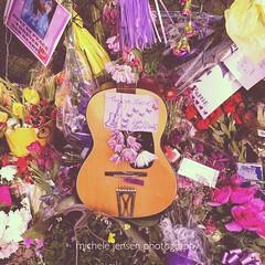 Thank you Prince (m i c h e l e j e n s e n [photography]) Tags: music memorial guitar prince paisleypark princerogersnelson thankyouprince