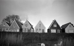 A Dutch view in Uitdam (Arne Kuilman) Tags: blackandwhite film netherlands iso100 nederland samsung scan roofs apx100 pointandshoot v600 agfa dijk dike daken uitdam slimzoom290ws