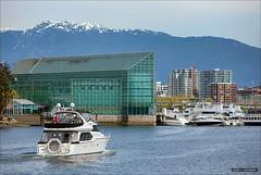 Homeward (Clayton Perry Photoworks) Tags: canada skyline architecture vancouver buildings boats spring bc falsecreek explorebc explorecanada
