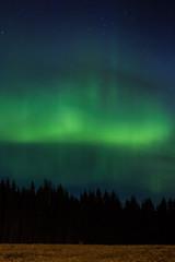 Green lights (Pilleluringen) Tags: wood longexposure trees sky cloud field landscape sweden outdoor aurora hrnsand norrsken northenlights highcoast