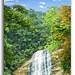 The Valara Waterfalls in its full glory!