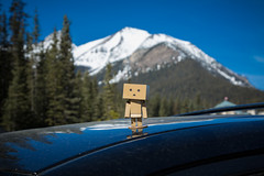 Banff Apr 2015-13 (memories by Mark) Tags: canada alberta banff banffnationalpark danbo danboard