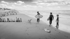 shall we surf? (DanMasa) Tags: dog mer beach cane children see mar surf mare bambini surfing bulldog spiaggia capocotta bagnasciuga