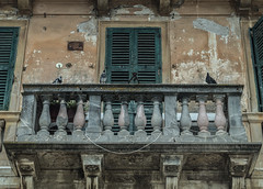 The Balcony with the Pigeons (ivan.neshovski) Tags: architecture island europe balcony pigeons sony greece balkans 1855 root corfu sonyalpha rootphotography sonylens sonyshots sonyimages sonya58 sonyslt58
