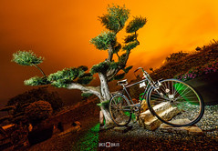 Cycling to hell / Al infierno en bicicleta (PacoQT) Tags: lighting longexposure lightpainting night cycling noche hell olive cicle viveros olivo infierno largaexposicin quiles pacoqt pacoquiles