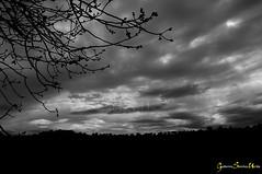 Nubes en el Valle (Batosanut) Tags: espaa blancoynegro contraluz toledo nubes rbol ramas