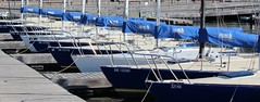 Bows (jmaxtours) Tags: toronto ontario boats boat sailing harbour bows torontoharbour sailingschool