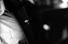 Flamingo (Stephen Dowling) Tags: blackandwhite film 35mm mono candid kodaktrix 3200 minoltasrt100x rokkor5814