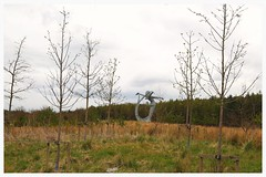 Arria, Cumbernauld. (Paris-Roubaix) Tags: sculpture andy public cemetery statue scott scotland poetry motorway jim cumbernauld sculptor m80 artworks kilsyth carruth eastfield arria