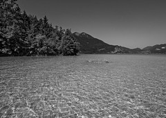 (elzauer) Tags: travel summer mountain lake salzburg tourism nature water landscape outdoors photography austria day waterfront lakeshore vacations wolfgangsee salzkammergut salzburgerland traveldestinations at lakewolfgangsee gschwand
