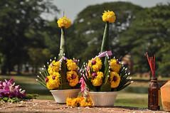 2014-12-08-09-08_ Thailand_Ayuthaya_118 (Mandir Prem) Tags: trip travel history thailand places exotic sacred ayuthaya экскурсия отпуск путешествие таиланд аютхая