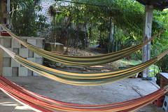 IMG_1548 (Anny08) Tags: fuego hamacas