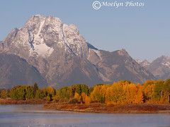 Oxbow Bend at Sunrise-Grand Tetons National Park-Wyoming (170) (moelynphotos) Tags: autumn fallcolors snowcapped snakeriver wyoming grandtetonnationalpark oxbowbend moelynphotos
