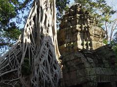 DSCN2305 (albyantoniazzi) Tags: voyage travel architecture cambodia angkorwat temples siemreap archeology kampuchea cambogia
