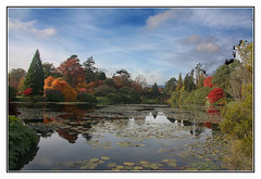 Autumn Lake (Audrey A Jackson) Tags: autumn trees lake colour water clouds reflections sussex 1001nights shrubs sheffieldparkgardens canon450