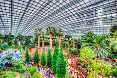 The Flower Dome (Shister ) Tags: singapore cny hdr photomatix tonemapped flowerdome gardensbythebay canon6d